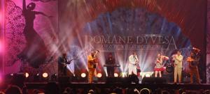 10 Romane Dyvesa_6887