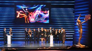 Telekamery 2009 - nagrody